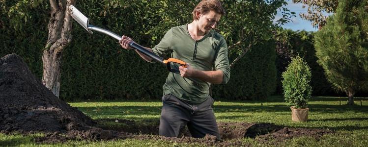 harmonogram prac w ogrodzie