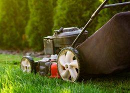 Jaka kosiarka do trawy? Jak wybrać kosiarkę do ogrodu?
