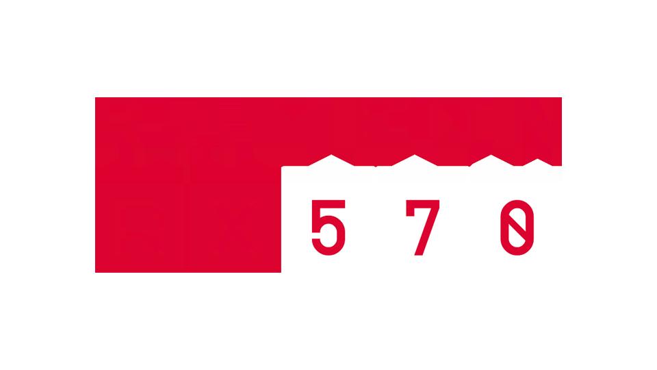 AMD Radeon RX 570 - logo